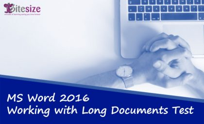 Word long documents test