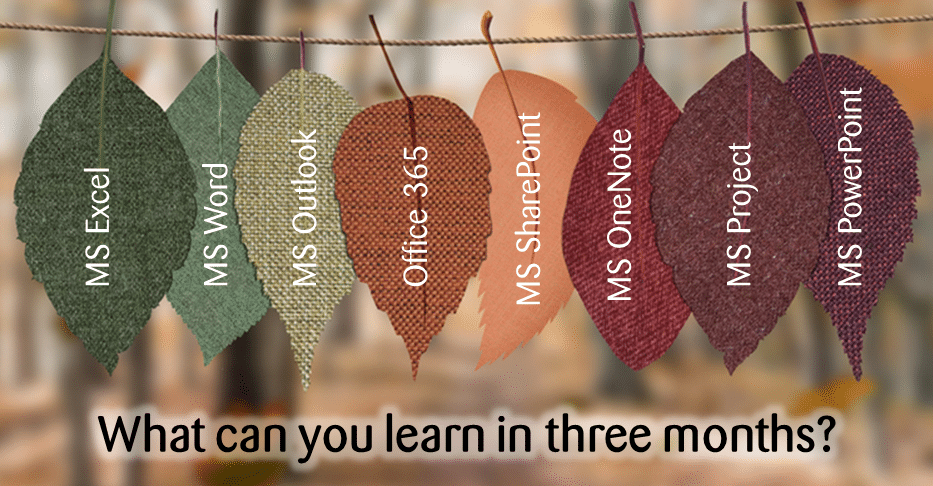 what can you learn in three months