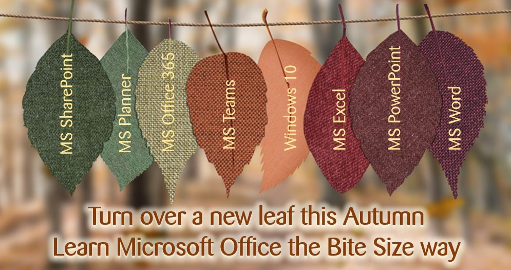 autumn turn over a new leaf v2